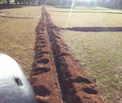 Randpark Golf Club Firethorn: Johannesburg, Gauteng, South Africa
