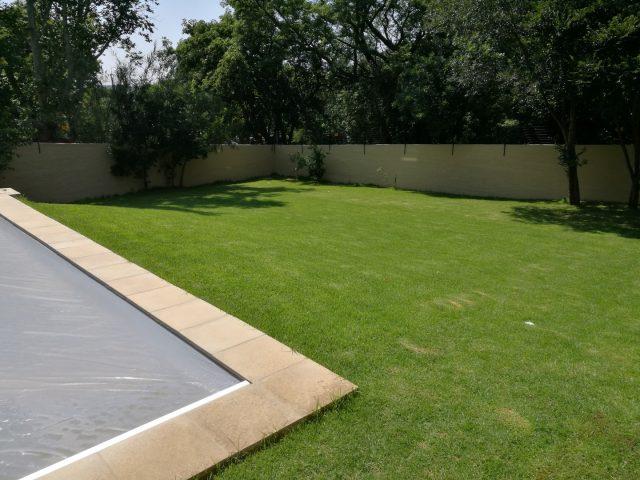 House Botha: Bryanston, Johannesburg, Gauteng, South Africa
